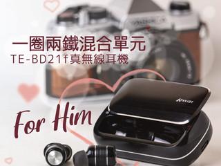 【❤AVIOT TE-BD21f - 一圈兩鐵混合單元】