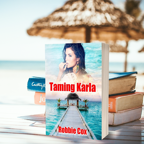 Taming Karla (The Harper Twins Book 2)