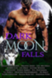 Dark Moon Falls-ebook.jpg