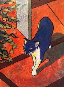 Graham's Cat