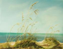 Sea Oats