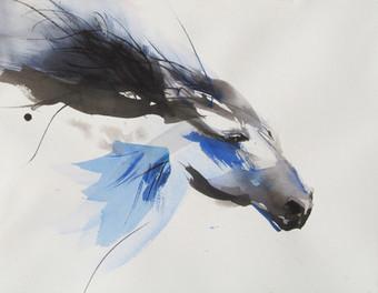 Wind Blue