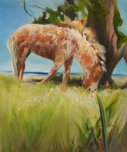 Carrot Island Foal