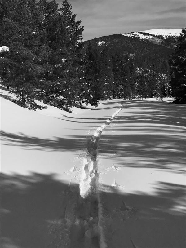 Unknown Skier