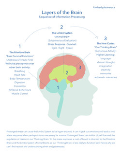 3 Layers of the Brain Sheet