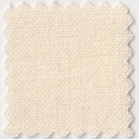Swatch image of Brushed Cotton in cream colour