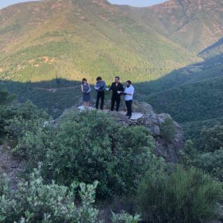 Ensemble Tarentule Ardèche.jpeg
