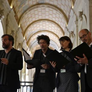 Ensemble Tarentule Musée des Beaux-Arts