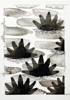 Lilies two
