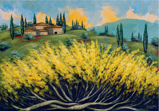 """""""Ginestre in Toscana"""""""