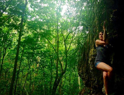 Guajataca Forest