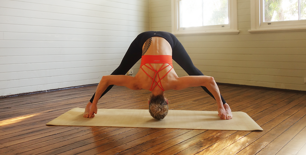 Mel Waters Yoga Tapas prasarita D strip.