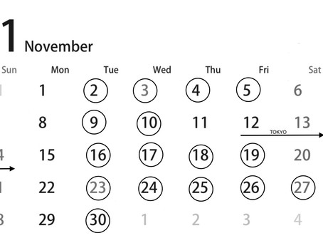 11月のスケジュール