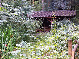 Buholzhütte.jpg