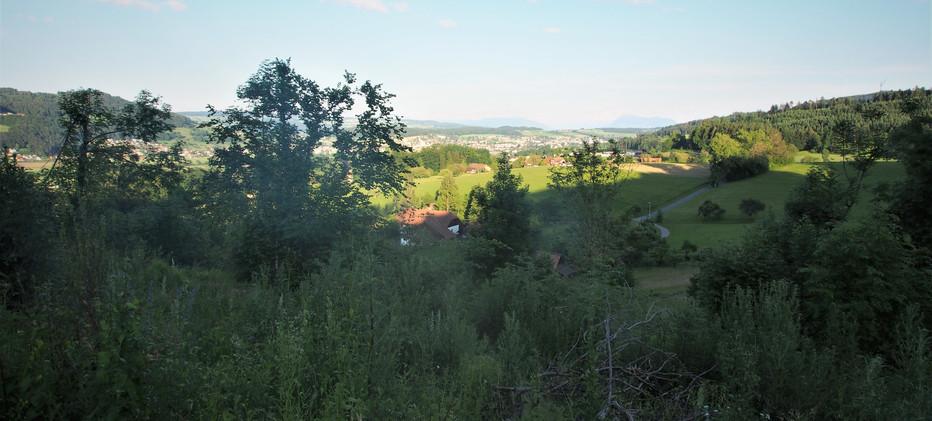 Sommer 19 Blick auf Gontenschwil