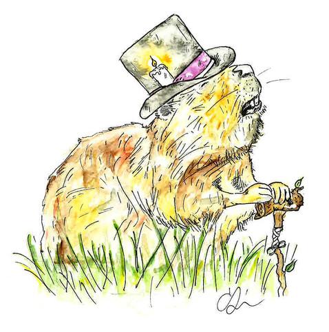 Lord Boffington Beaver