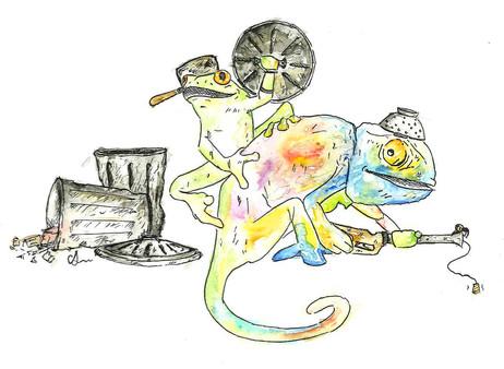 Chameleon & Frog