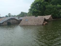bihar flood 1.png
