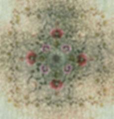 glow_camouflage-poppy.jpg