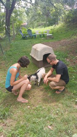 Buddy Goat & Guest