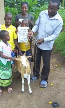 Oscar and the goat