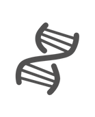 DERMATUDE Firming & Lifting webshop - Yo