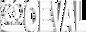 logo-coeval+856.png