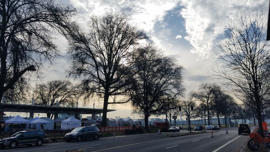 Five O Tree Market Morning.jpg