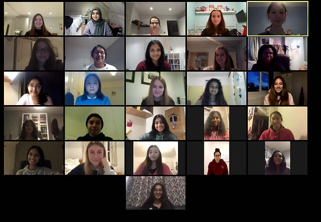 The whole team on a zoom call
