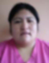 Huichaleo Millanao Sara Elizabeth.png