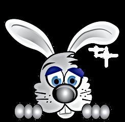 BunnyHead-01.png