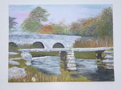 Bridge Dartmoor