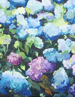 Ernie Lee , Blue Hydrangeas