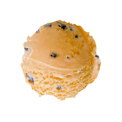 Orange Chocolate Chip