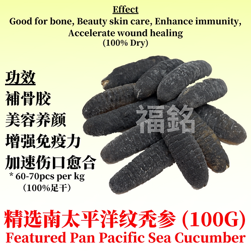 Featured Pan Pacific sea cucumber (100G)