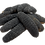 Thumbnail: Featured Pan Pacific sea cucumber (100G)
