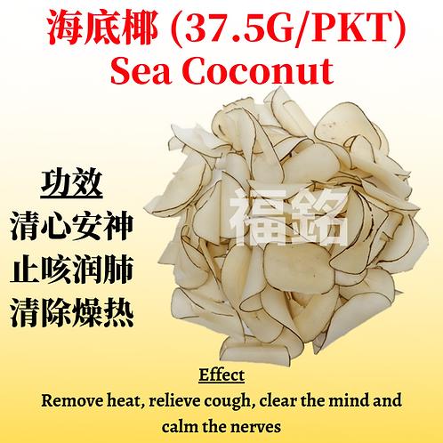 Sea Coconut (38G/PKT)
