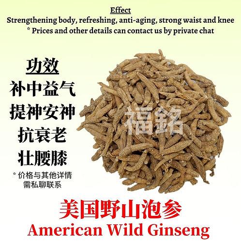 American Wild Ginseng