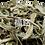 Thumbnail: Stevia Leaf (37.5g/pkt)
