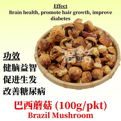 Brazil Mushroom/Agaricus blazei (100G / PKT)