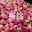 Thumbnail: Purple Rose Flower (37.5g / pkt)