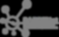 SABRENet-logo.png