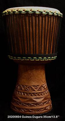 AWA Duki Guinea 35cm/13.8''/11,4 Kgs