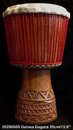 AWA Duki Guinea 35cm/13.8''/12,4 Kgs