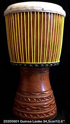 AWA Lenke Guinea 34,5cm/13.6''