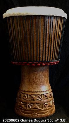 AWA Duki Guinea 35cm/13.8''/12,3 Kgs