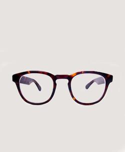 Tortoise Shelled Specs