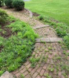 sidewalk-before.jpg
