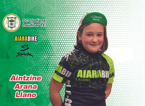 Ficha-Aintzine-Arana-Llano-1024x745.jpg