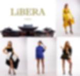 Vision of LiBERTY 2.jpg